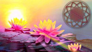 Positive Flower Vibration