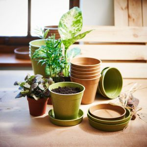 indoor pots and saucers